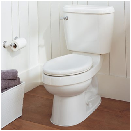 Superb A Highly Recommended Elongated Toilet Seat Bath Royale Evergreenethics Interior Chair Design Evergreenethicsorg